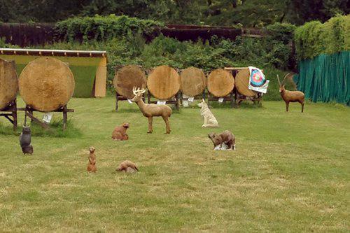 3D-Bogenschießen: 8 3D-Tiere in unterschiedlichen Entfernungen auf der Trainingswiese für Anfänger und Fortgeschrittene